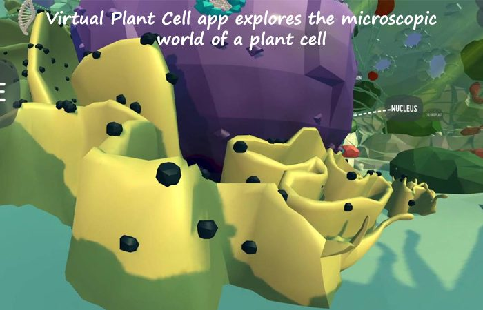 Virtual Reality Walks Around The Microscopic World Of A Plant Cell
