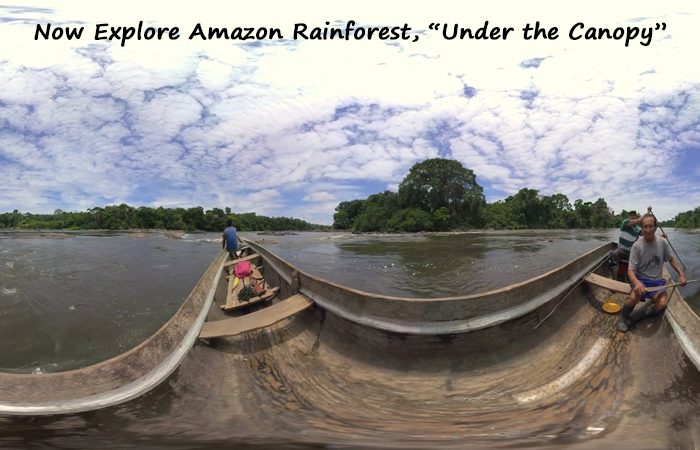 Know, What It Feels Like To Explore Amazon Rainforest with VR