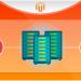 Magento: Custom Website design or Theme?